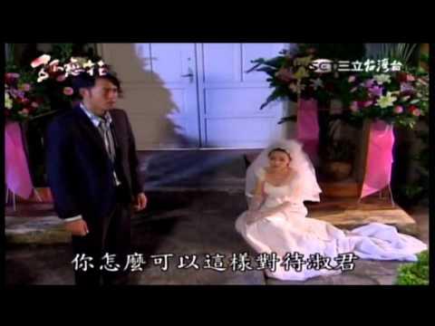 孤戀花 15 集【