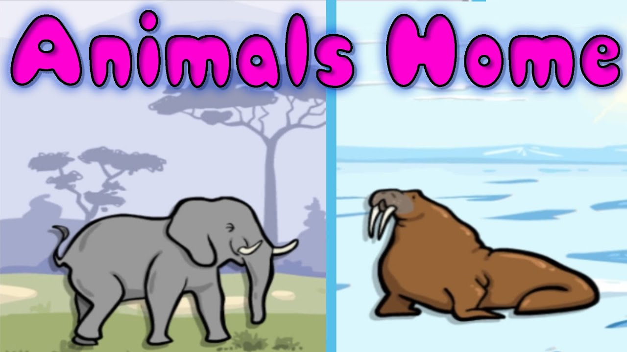Animals and Their Homes - Fun Learning Game for Kids, Educational ...