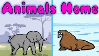 animals and their homes fun learning game for kids educational activities for children