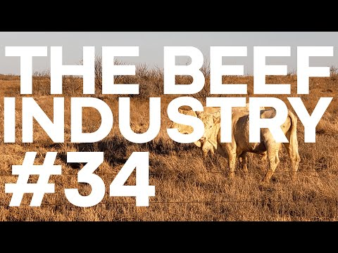 The Beef Industry Episode | Starting Strength Radio #34