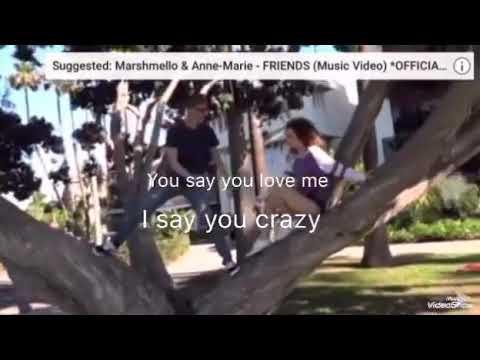 Friends lyrics (Sofie dossi music video) image
