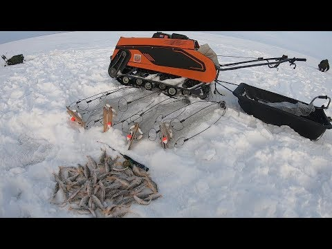 Рыбалка На Окуня Зонтик Хапуга Зимняя Удочка#рыбалка#хапуга#МотоБуксАляска#окунь#