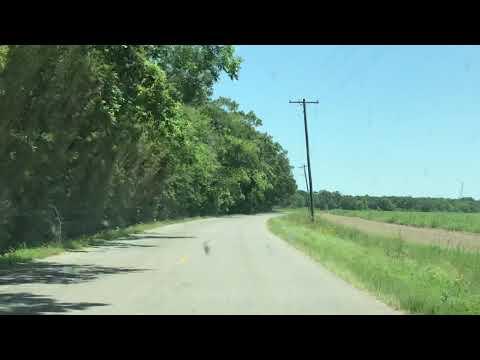 Irish Bend Road Drive: Franklin, Louisiana
