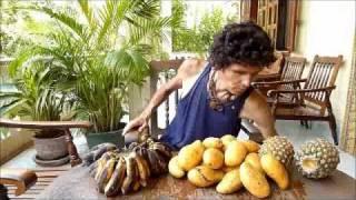 Un régime frugivore… : la pratique!! - www.regenere.org