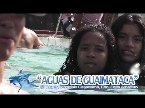 AGUAS DE GUAIMATACA, CASACOIMA EDO. DELTA AMACURO