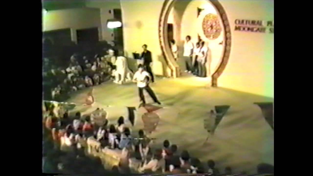 1985 chinese new year taijiquan demo - Chinese New Year 1985