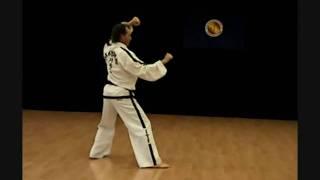Dan - Gun Tul Taekwon-do Estilo ITF