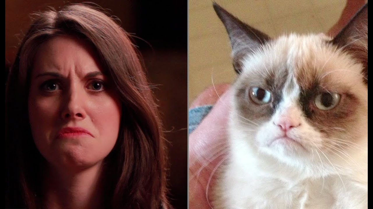Alison Brie Breaks the Internet With Meme Impressions [VIDEO]