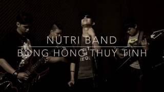 Bông Hồng Thuỷ Tinh - Nutri Band Acoustic (Cover)