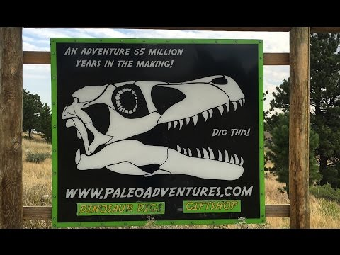 Digging for Dinosaurs With PaleoAdventures