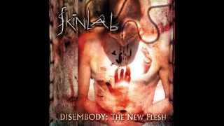 Great Bands You May Not Have Heard Of - #17 Skinlab - No Sympathy (For The Devil)