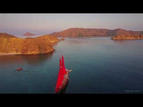 Calico Jack Charters - Dive Liveaboard Indonesia. Adventures in Raja Ampat, Komodo and more..
