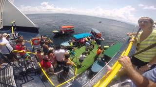 The Ferry Xpress (Colon - Bocas del Toro) Experience