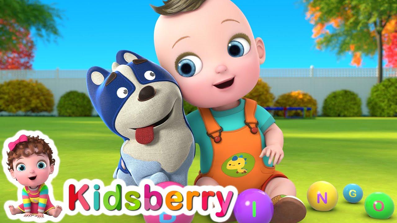 Bingo | Bingo Dog Song | Nursery Rhymes | Baby Songs