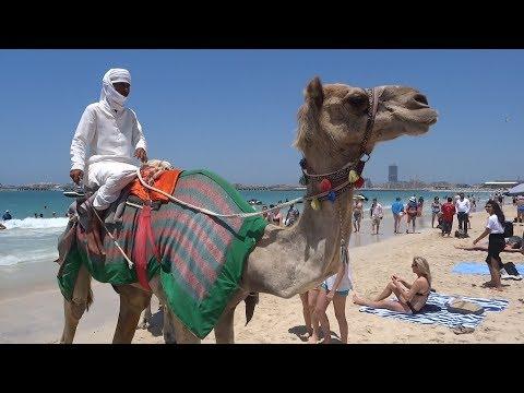 Dubai, Beach in Dubai, Dubai Travel,  United Arab Emirates (UAE)