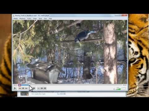 VLC Media Player - How to Use [Tutorial]