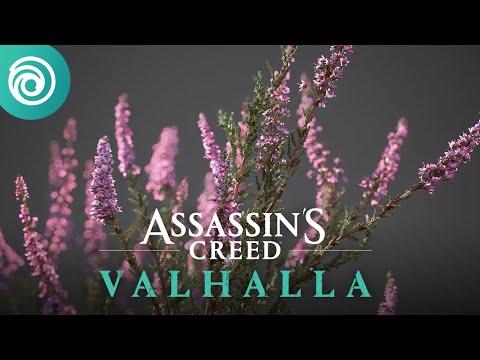 Découvrez nos coulisses : la création de la flore d'Assassin's Creed Valhalla