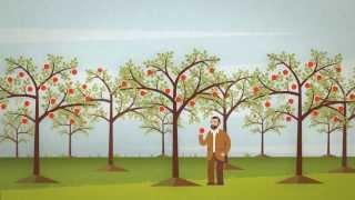 видео Обязательное пенсионное страхование в России