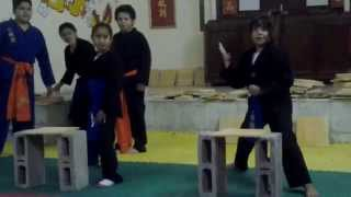 KUNG FU NHAN VO DAO SEMINARIO ROMPIMIENTOS 2 GRAND MASTER RAMON YEE