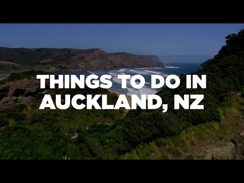 Travel Guide: Things To Do In Auckland, NZ