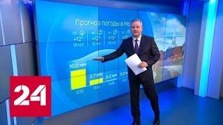 """Смотреть видео """"Погода 24"""": в европейской части России ожидаются шторм и ливни - Россия 24 онлайн"""