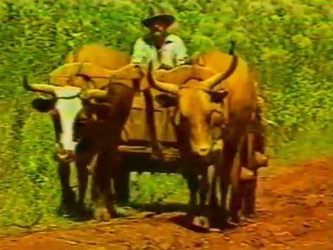 Historia de los pueblos de Misiones: Obera 1