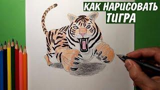Как нарисовать ТИГРА. Рисунок карандашом / Просто рисуем