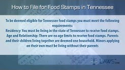 How to File for Food Stamps Tennessee