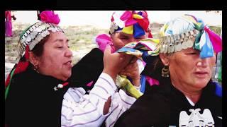 La voz de Anamuri 4: Voces de La Araucanía - Anamuri