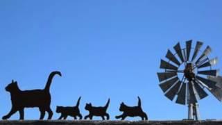 Godnattsagor: Kattungen