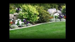 Garden Tips | Garden Tips and Tricks