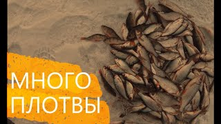 ИСТРИНСКОЕ вдхр и озеро СЕНЕЖ зимняя рыбалка по последнему льду много  плотвы