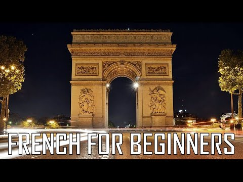 French for beginners 5 hours to learn French basics  Units 1234