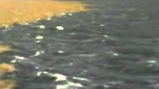 البحر بينهÙ...ا برزخ لا يبغي[1]
