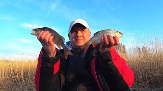 Весенняя Рыбалка на Поплавок Дуплеты один за другим