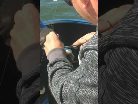 15 pound northern caught at Maple Lake, MN