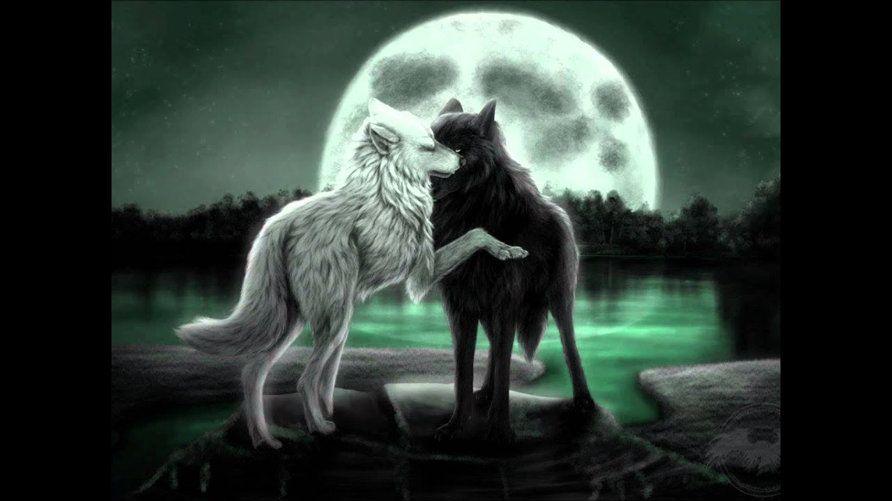 The Power Of Wolf-Love.. - YouTube