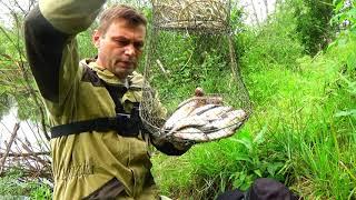 Вдала рибалка. Чебак клює як з кулемета. Річка Лобва. Рибалка в Свердловській області.