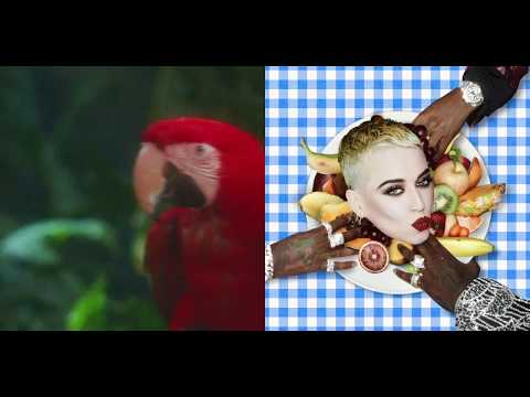 Calvin Harris ft./vs. Katy Perry - Bon Feels ft. Migos (Premium Mashup)