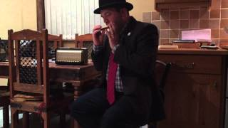 Ode To Joy on a Hohner Comet harmonica key of F
