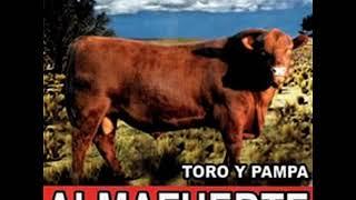 Almafuerte - Toro y Pampa YouTube Videos