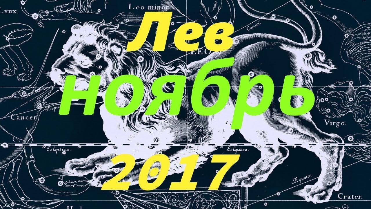 отменного порно гороскоп на февраль 2017 для львов горят