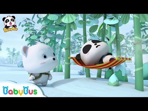Who is the Real Panda Kiki? | Baby Panda's Magic Bow Tie | Magical Chinese Characters | BabyBus