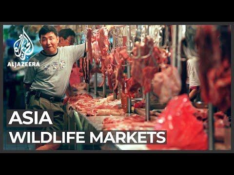 Coronavirus: Outbreak Puts Wildlife Markets In The Spotlight