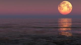 Wpływ Księżyca Na życie I Zdrowie