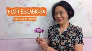Flor Escabiosa com Junko Miazato