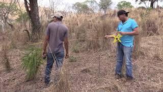 Niña Rut #1 este es el terreno que se comprara para construir la casa - Ediciones Mendoza