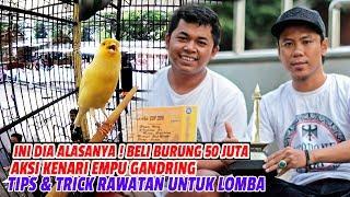 Gambar cover JAYAKARTA CUP 2018 : Ini Dia Alasannya! PRIA Ini Beli Burung 50 Juta,Tips &Trick Rawatan Untuk Lomba