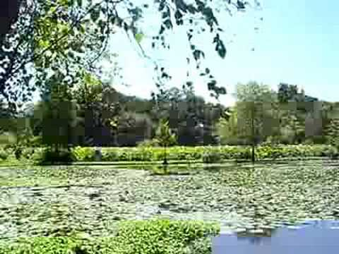 Kenilworth aquatic gardens youtube - Kenilworth park and aquatic gardens ...