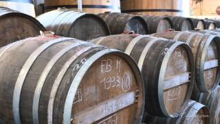 Cognac.com: Bache Gabrielsen Cognac Exclusive Tour & Interview